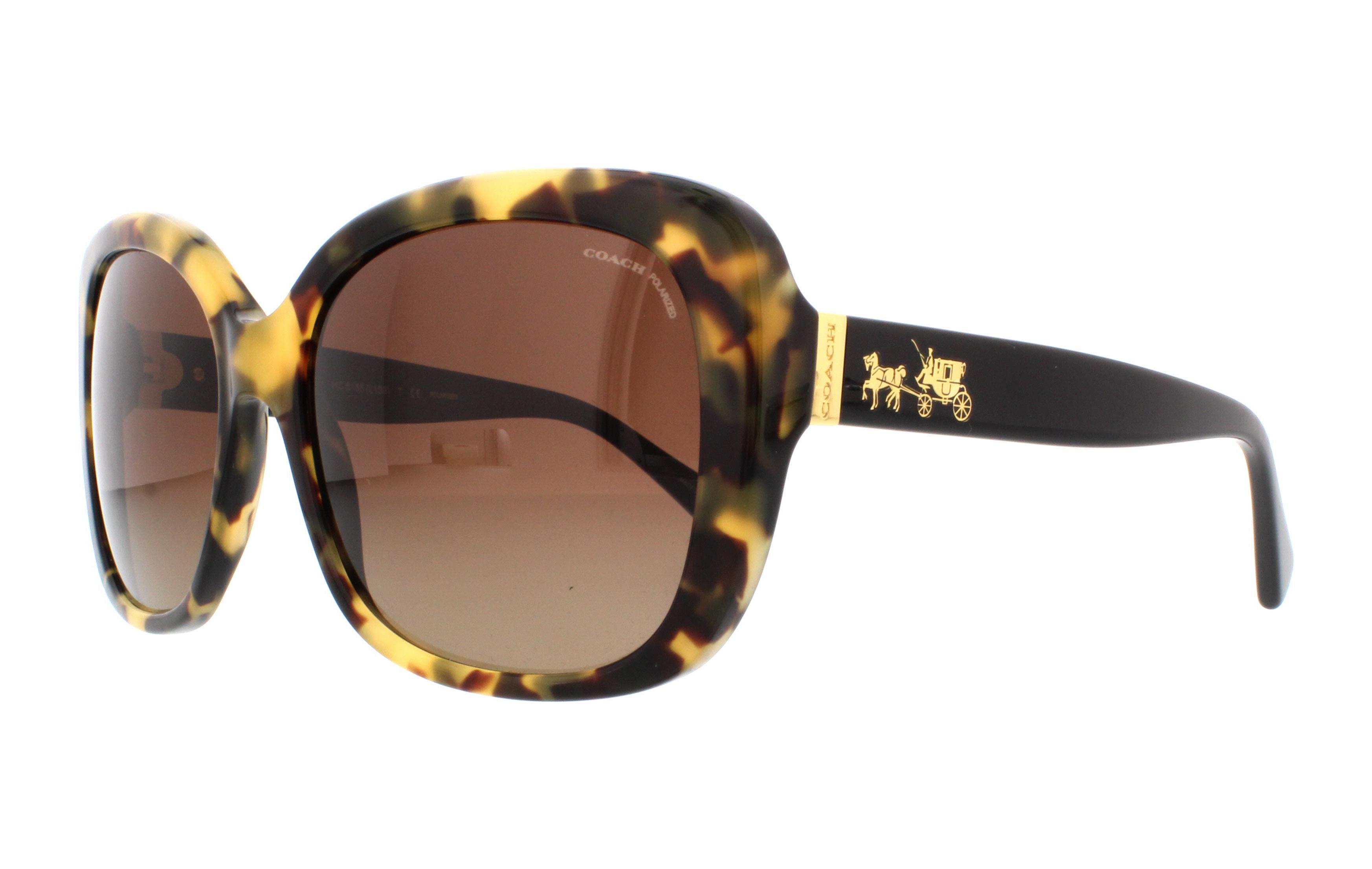 81358d6b2d ... italy coach sunglasses hc8158 l139 5324t5 dark vintage tortoise black  58mm f8258 c954f
