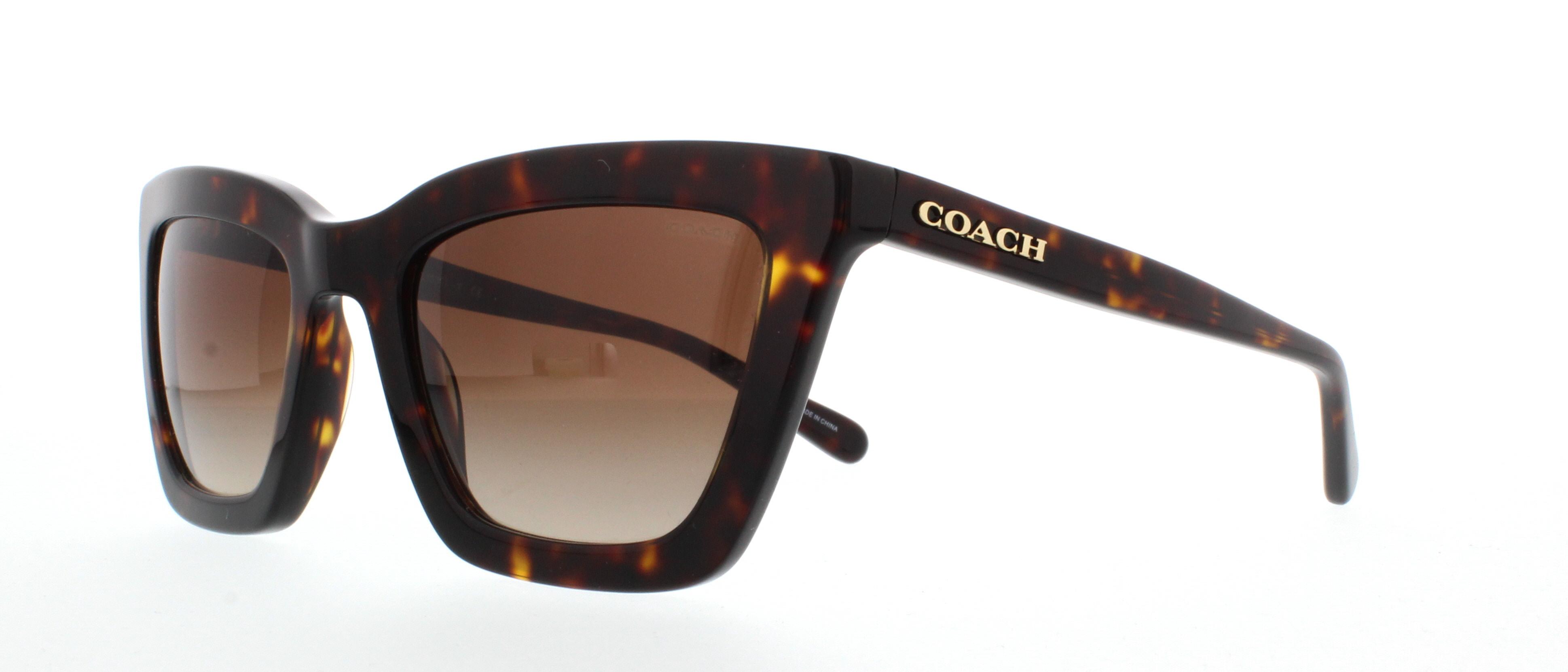 c3387ff7e210f ... promo code for coach sunglasses hc8203 l1630 512013 dark tortoise 54mm  e40b0 04492